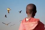 Schwarzes Kind schaut Vögeln hinterher